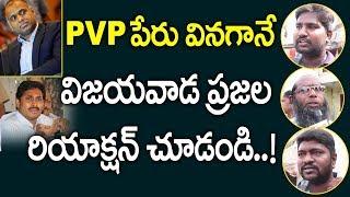 PVP పేరు వినగానే  విజయవాడ ప్రజల రియాక్షన్ చూడండి..! | Vijayawada Public Talk | Myra Media