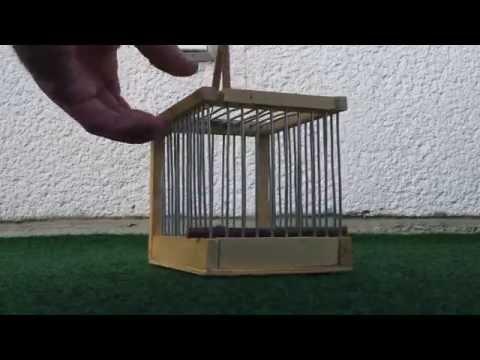 Vögel Falle  Vögelfalle  Bird Trap