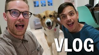 We Adopted a Dog!! (Vlog #36)