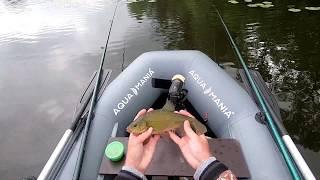 Линь где и как поймать Секретный ингредиент в прикорму Рыбалка на поплавок В поисках линя