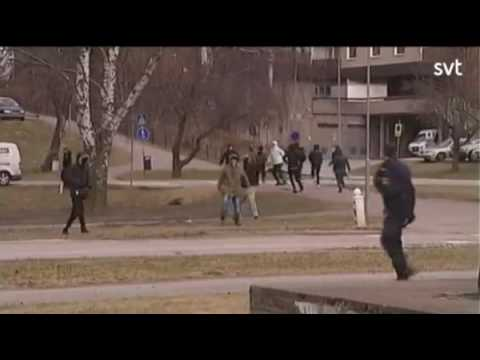 Migrant youth brawl at  Hallsberg Alléskolan