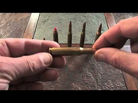 Hunting Calibers & Bullets Explained 055