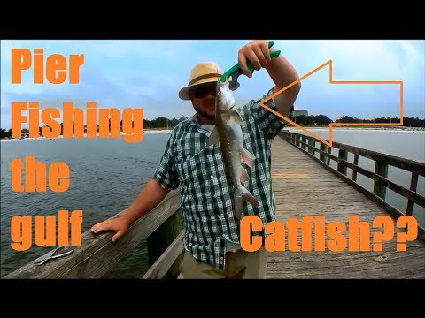 Pier Fishing In Gulfport Mississippi - We Caught A BUNCH