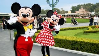 Disney Haul Surprise Toys with MICKEY and MINNIE Mouse