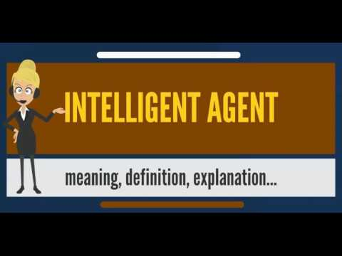 What is INTELLIGENT AGENT? What does INTELLIGENT AGENT mean? INTELLIGENT AGENT meaning