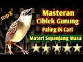 Ciblek Gunung Masteran Paling Di Cari  Mp3 - Mp4 Download