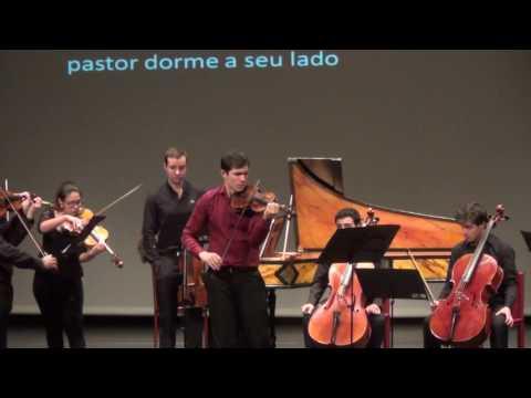 """""""As Quatro Estações"""" de Vivaldi - Camerata da Orquestra Sinfónica Juvenil"""