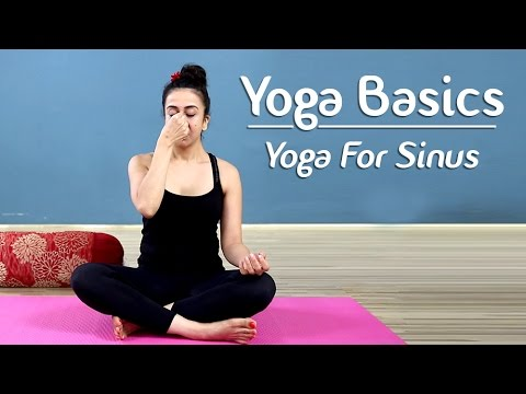 Yoga To Cure Sinus And Cold | Yoga Poses For Sinus | Yoga For Beginners – Yoga With AJ