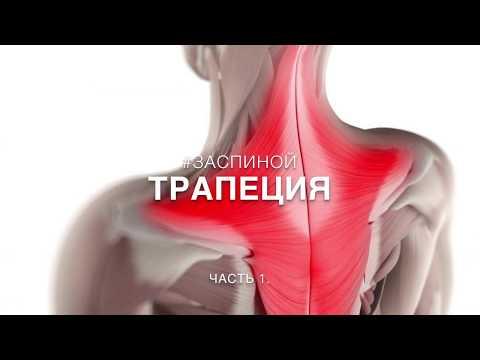 #ЗАСПИНОЙ Как снять напряжение с трапециевидной мышцы. Часть 1.