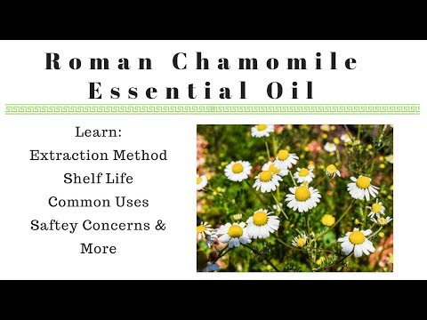 roman-chamomile-essential-oil