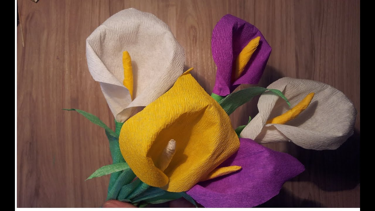 фото калла цветок