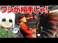 【DBD】キラーめ!ワシが相手じゃ!!!T&KでDead by Daylight実況!【T&Kbros】