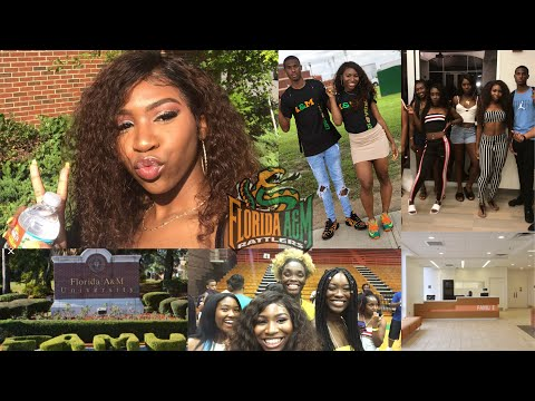 """""""WELCOME TO THE HILL"""" FAMU 22 FRESHMAN ORIENTATION VLOG 🐍🧡 #KAMCAM"""