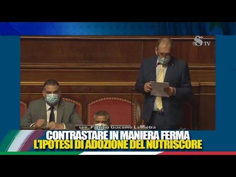 FdI Parlamento