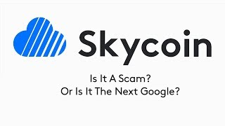 Is Skycoin A Scam Or The Next Google?