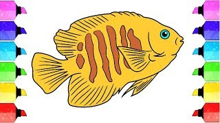 Learn color for kids How to draw Fish Coloring Page | Drawing Extra