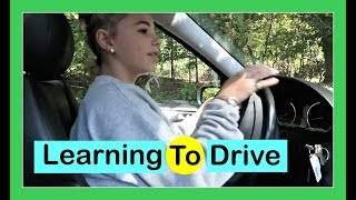 LEARNING TO DRIVE A CAR