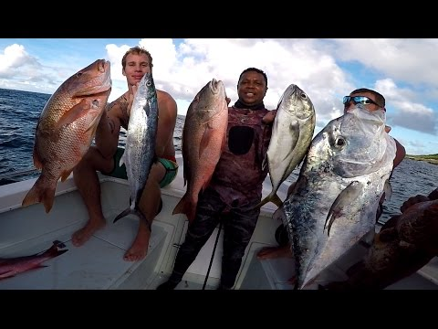 Spearfishing Guadeloupe Désirade vol 4