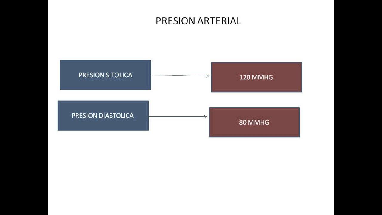 Presión arterial sistólica y diastólica youtube