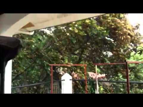 Storm Glenda hitting San Basilio Sta Rita pampanga