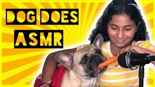 MY DOG TRIES ASMR!! (Eating sounds)