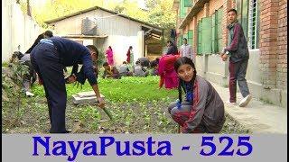 NayaPusta - 525