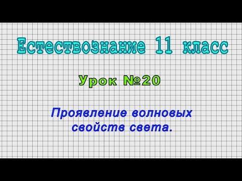 Естествознание 11 класс (Урок№20 - Проявление волновых свойств света.)