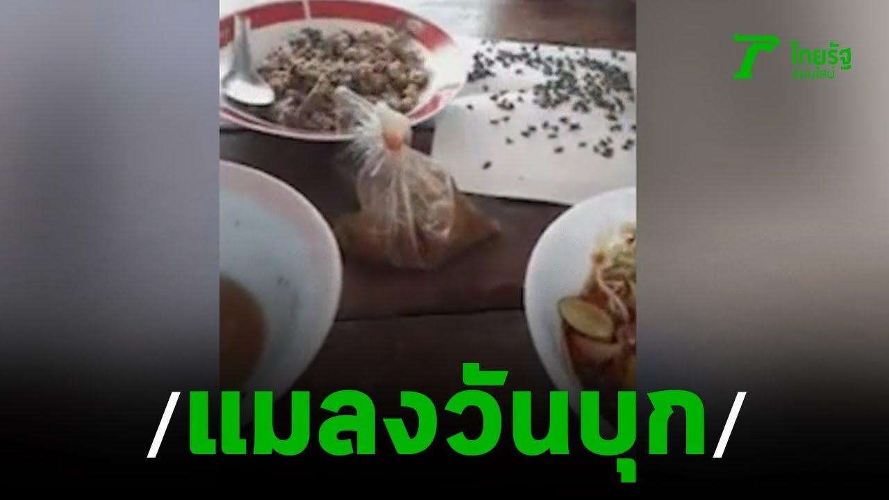 ชาวบ้านร้องกองทัพแมลงวันบุกบ้าน | 09-10-62 | ข่าวเย็นไทยรัฐ
