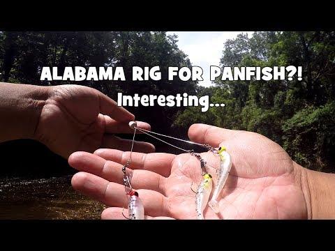 ALABAMA Rig For PANFISH?! WADING & Fishing W/ My MTB BOX! (Panfish Slam) (Bethayres, PA)