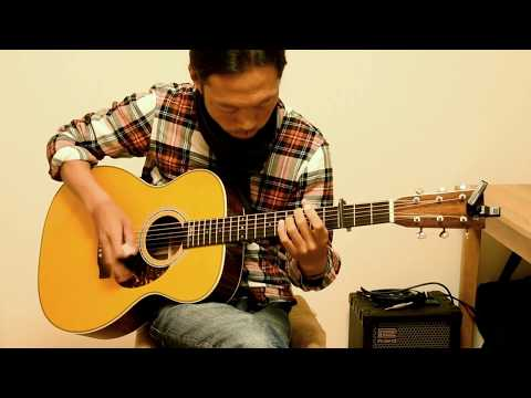 never grow old / andy mckee - cover by tarsan