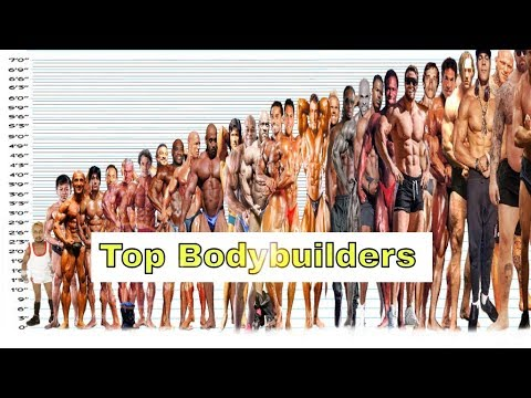 Top Bodybuilders Height Comparison Chart | All Bodybuilders Around The World