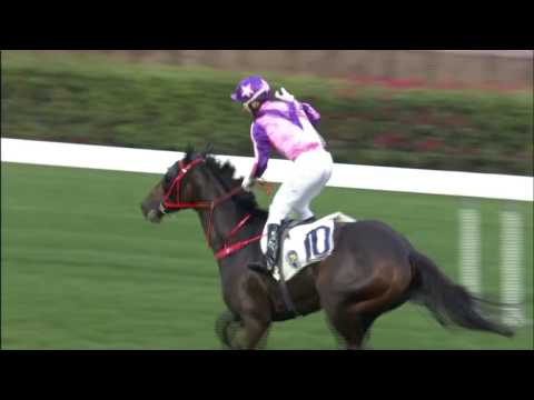Joao Moreira Wins Eight Races in One Card