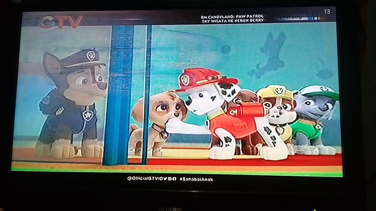 paw patrol  pups and the trouble with turtles indonesian