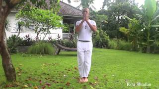 Йога. Самое простое упражнение для правильной осанки|Владимир Бодяшко