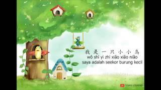 wo shi yi zhi xiao xiao niao  我 是 一 只 小 小 鸟- lyrics