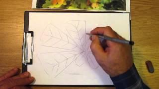 Как рисовать листья дуба. Часть 1. Урок 30