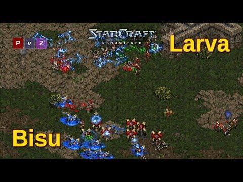 Bisu vs Larva en una clase maestra de cómo jugar Starcraft Remastered