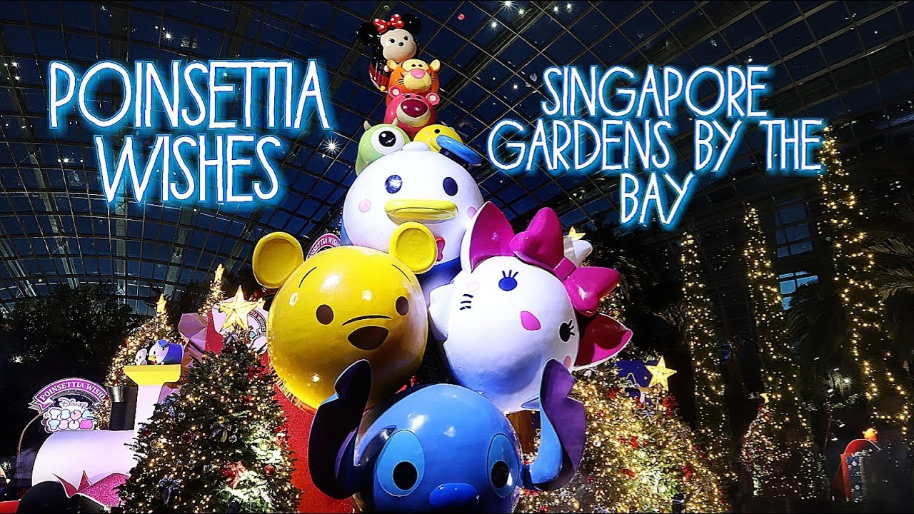 Tsum Tsum Appears At Singapore Gardens By The Bay Ponsettia Wishes