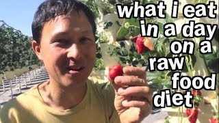 What I Eat in a Day on Raw Food Diet When I Travel