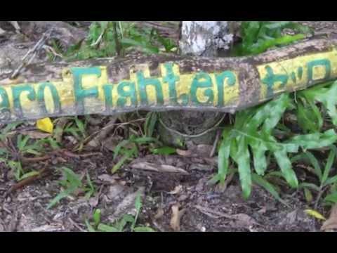 Best of Palau, 2015:  Peleliu and Koror