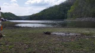 Free Lake Camping in Tennessee