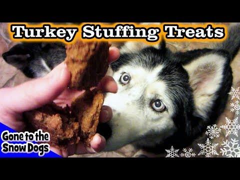 turkey-stuffing-dog-treats-|-diy-dog-treats-|-snow-dog-snacks-16