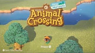 Nintendo Switch My Way   Animal Crossing (motion Tracked)