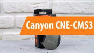 Розпакування Каньйон СНХ-CMS3 / розпакування Каньйон СНХ-CMS3