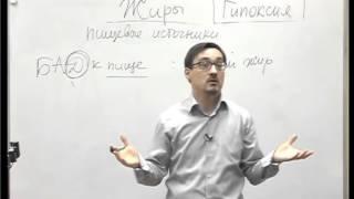 Омега 3 и Лецитин Константин Заболотный