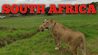 Trip to SOUTH AFRICA!! (Travel Vlog) // 2018 Christmas Vacation Part 2
