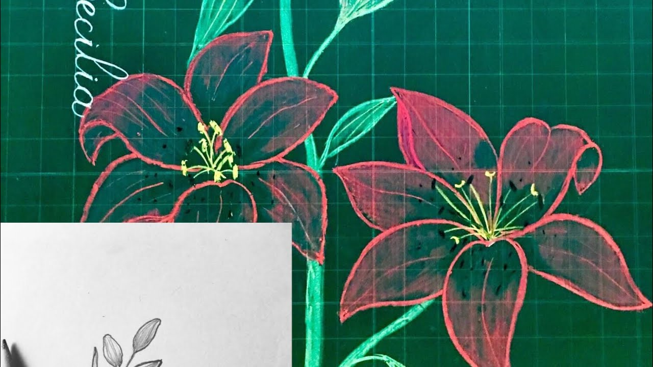 TRANG TRÍ BẢNG #11  CÁCH VẼ HOA LY  How to draw LiLy Flower