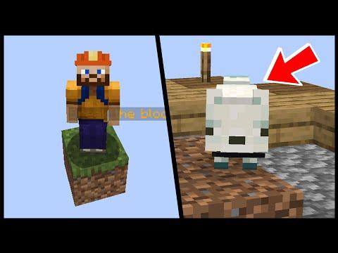 UĞURSUZ TİLKİ !!! Minecraft: TEK BLOK SKYBLOCK #3