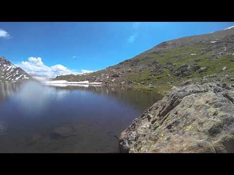 Greenback Cutthroat Trout in Colorado High Mountain Lake