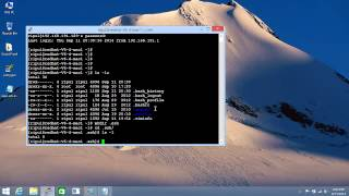 Configuring Putty for a Passwordless ssh login - Redhat Linux 6